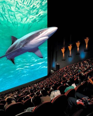 Màn chiếu bạc 3D thông dụng trong rạp chiếu phim